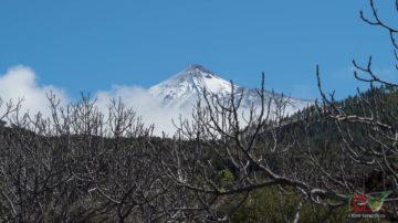 Экскурсия по вулканам Тенерифе