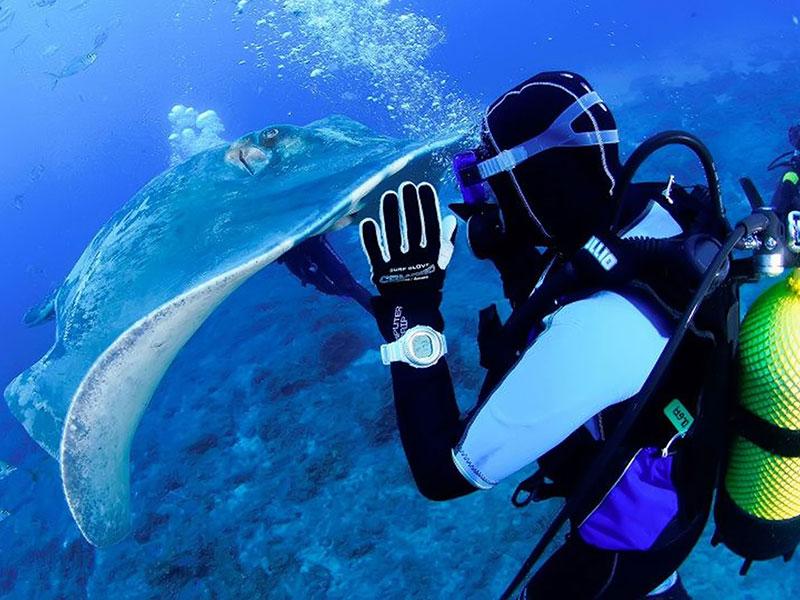 diving-na-tenerife-004
