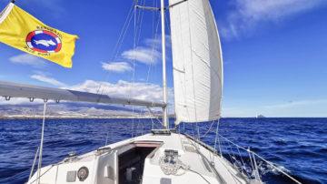 Морские прогулки на Тенерифе