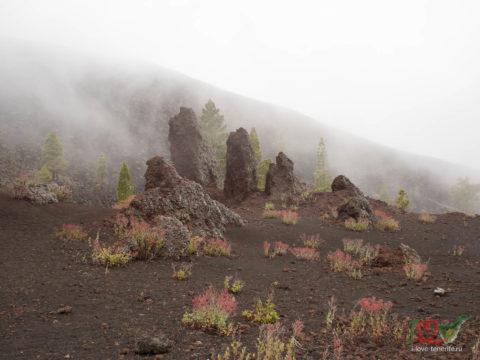 Вокруг вулкана Trevejo