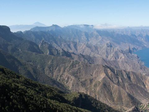 Chamorga — Roque Bermejo